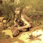 ワイマールの先史博物館で人類の歴史を知る