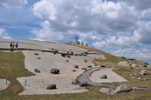 氷河に運ばれた大量の迷子石が並...